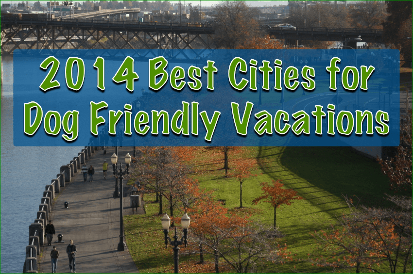 2014 Best Cities for Dog Friendly Vacations