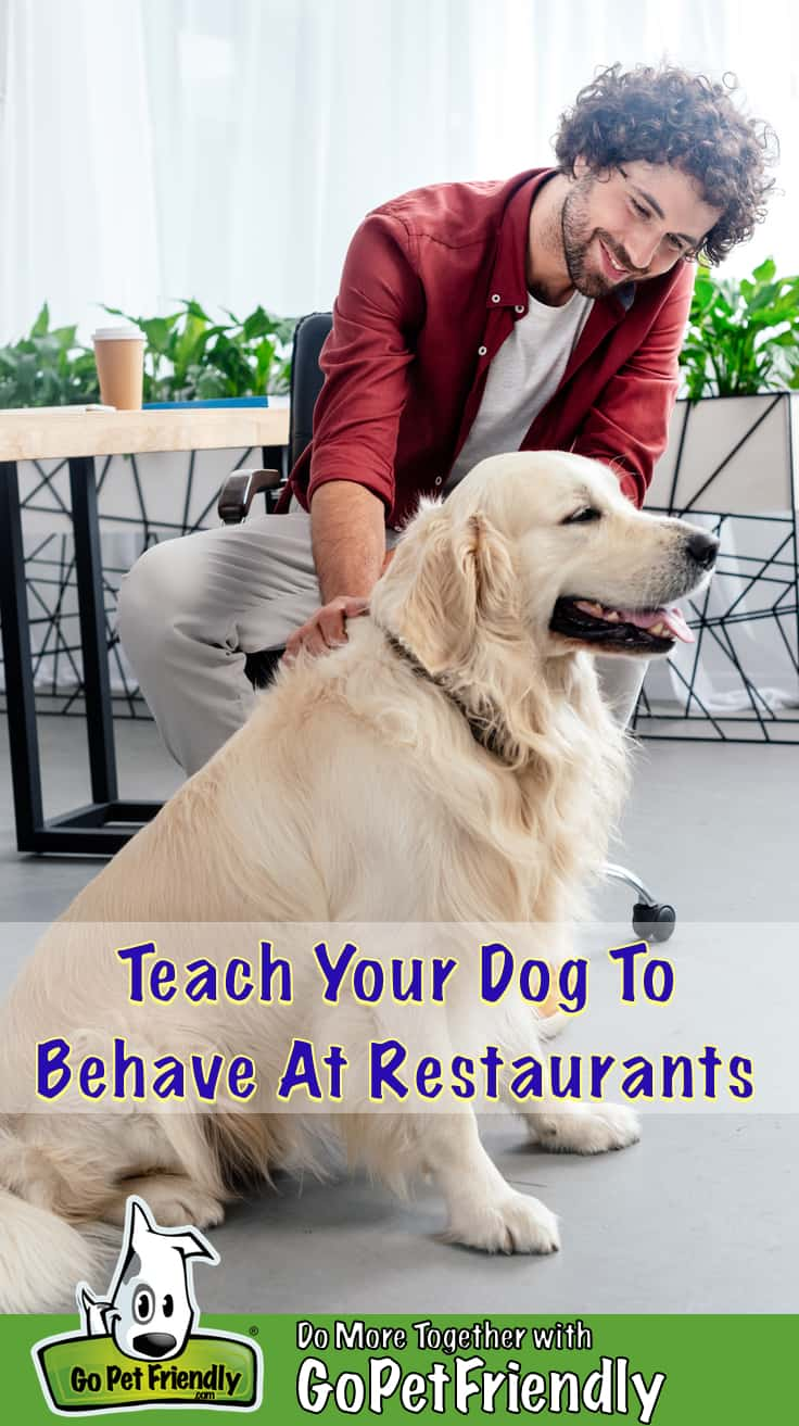 Golden Retriever dog and man sitting at a table at a pet friendly restaurant