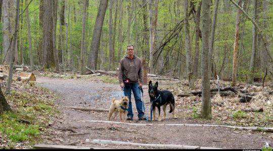 Dog Friendly Nolde Forest - Reading, PA