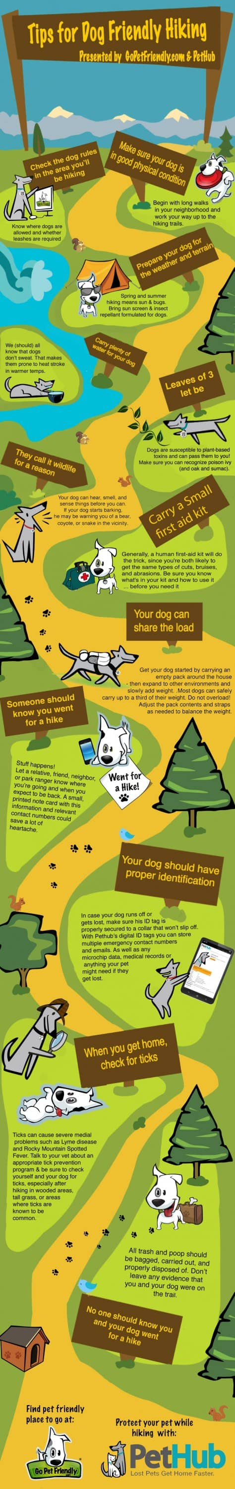 Hiking-Infographic