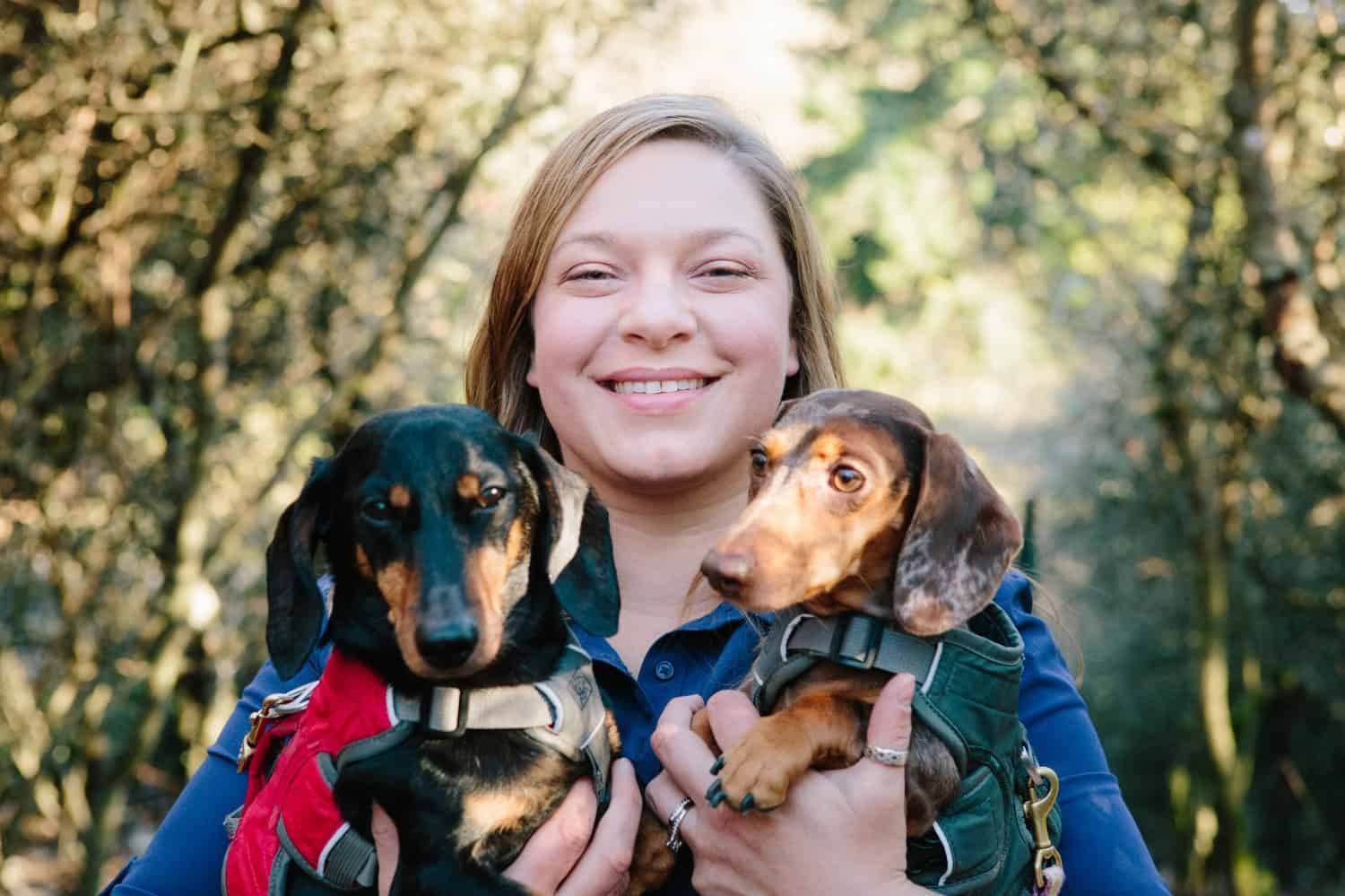 Top 11 Dog Friendly Activities in Seattle