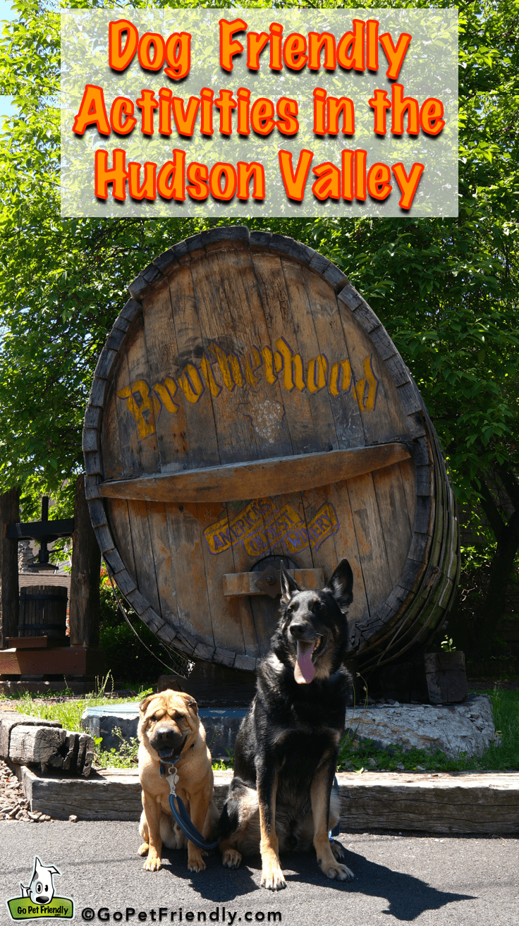 Dog Friendly Activities in the Hudson Valley