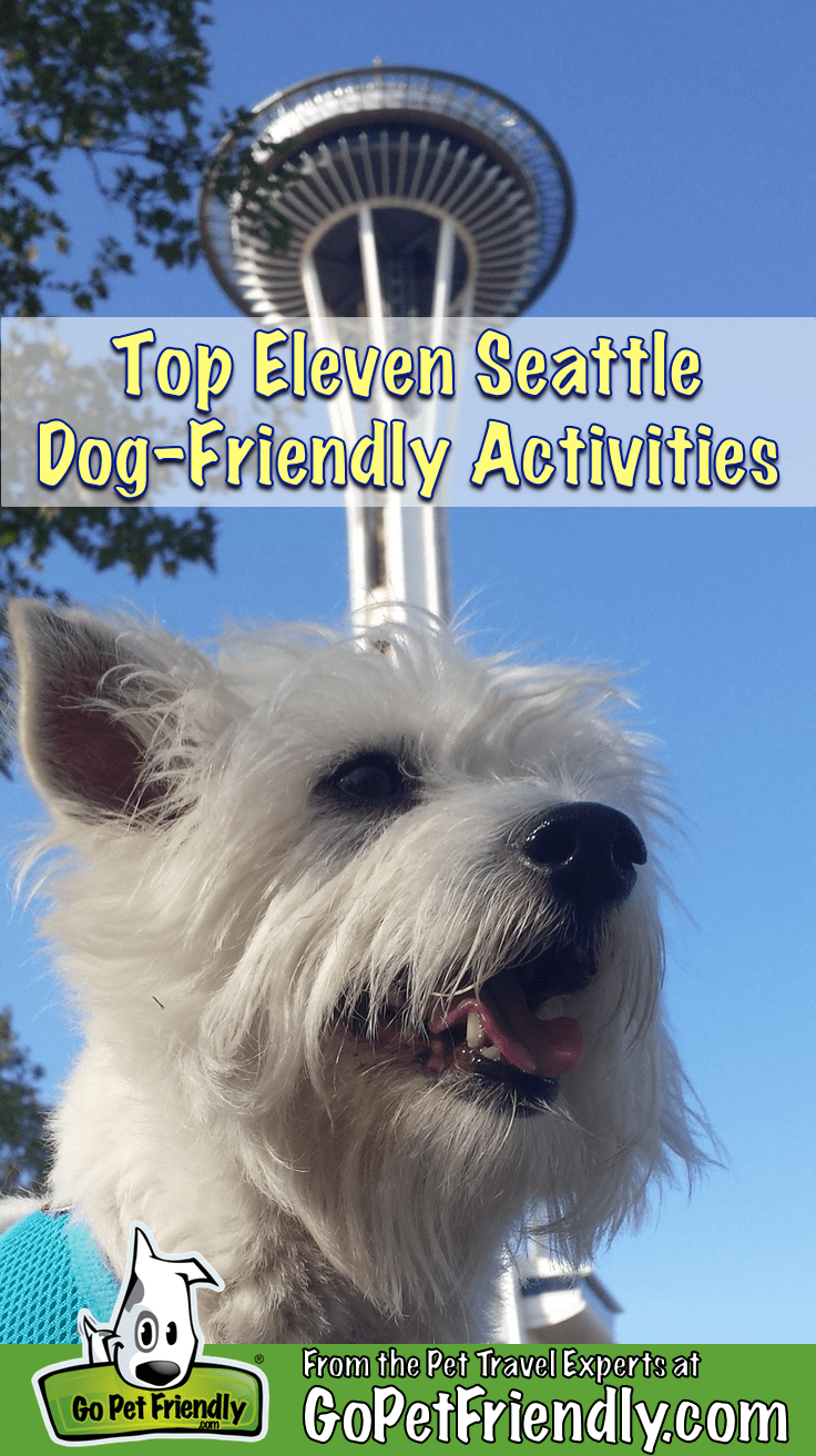 White Terrier sitting in font of the Space Needle in Seattle, WA