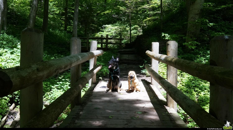 Seven Bridges Trail - Milwaukee, WI