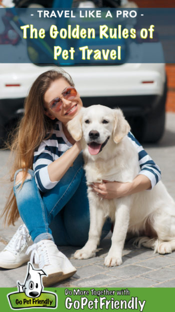 Woman in sunglasses traveling with a happy Golden Retriever puppy