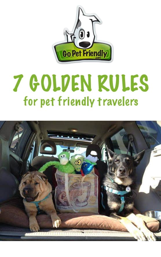 The Golden Rules of Pet Travel