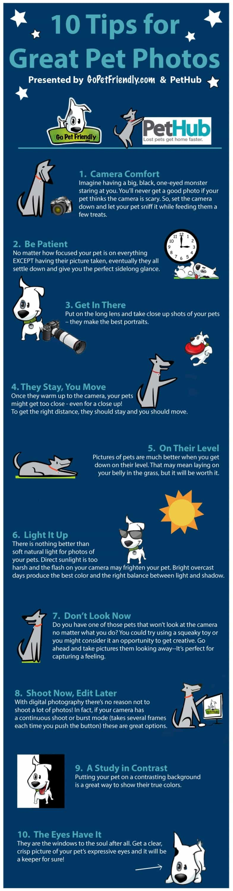 Infographic - Pet Photos