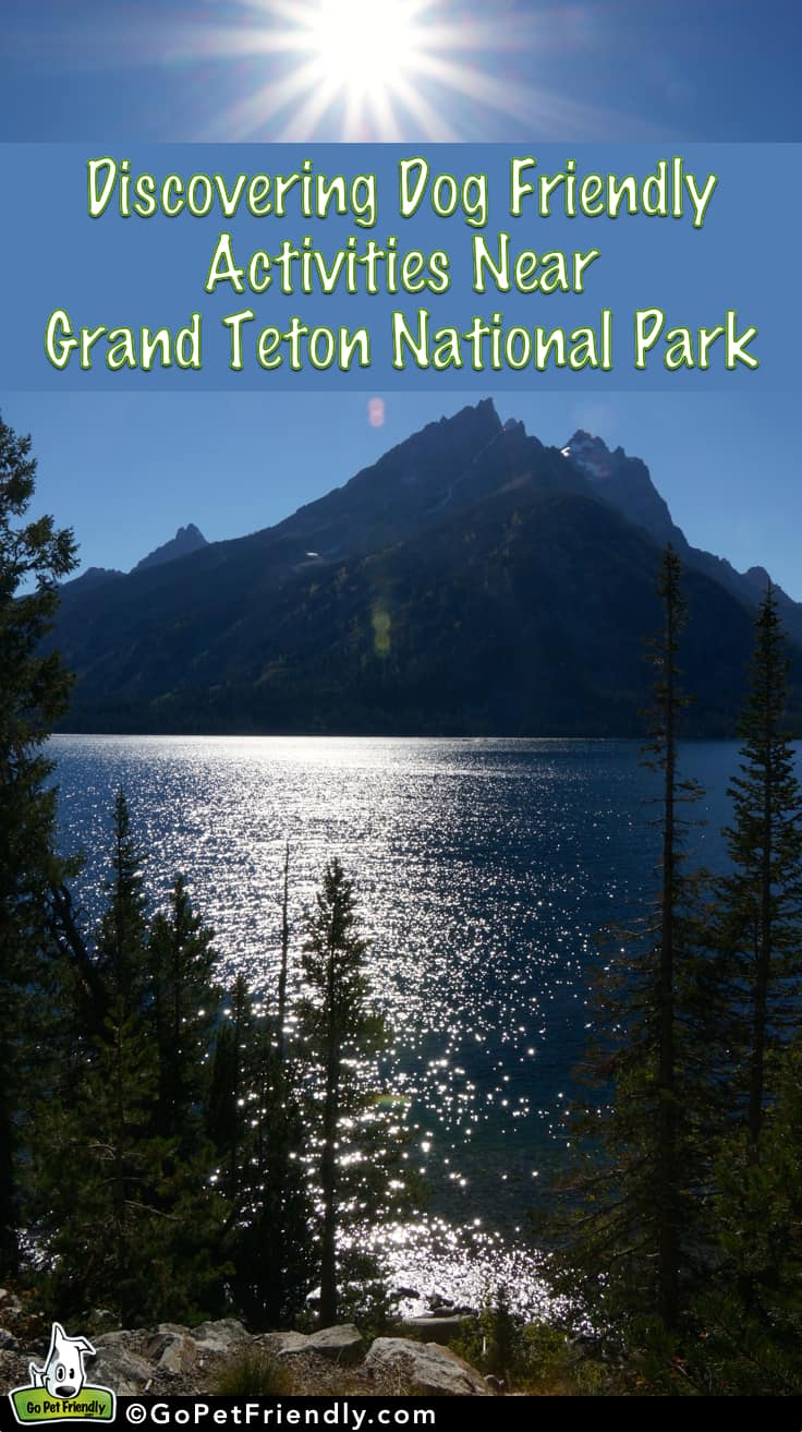Discovering Dog Friendly Activities in the Grand Tetons | GoPetFriendly.com