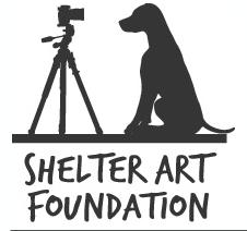 Shelter Art Foundation Logo