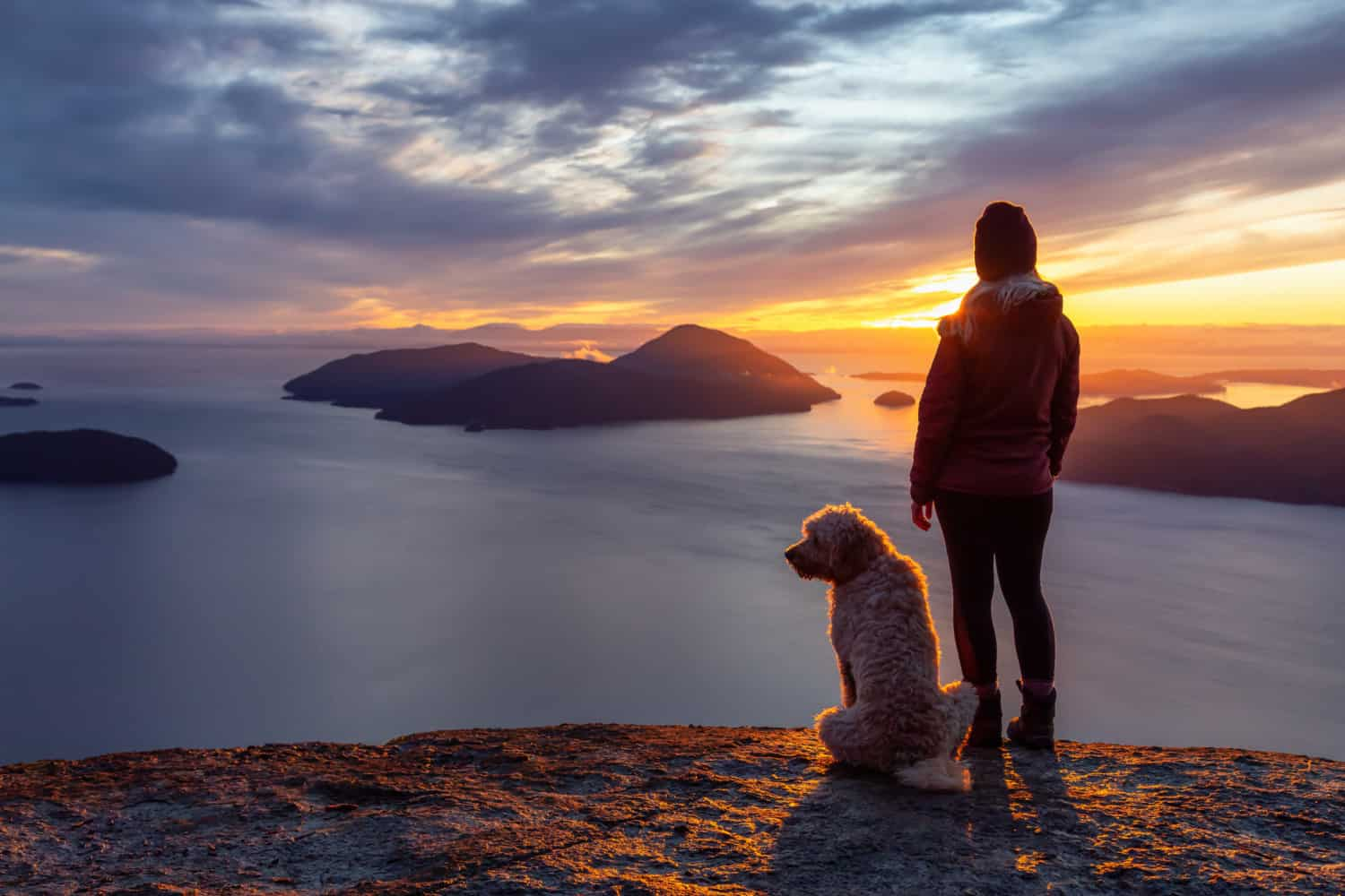 Woman dog on a mountaintop near Vancouver at sunset