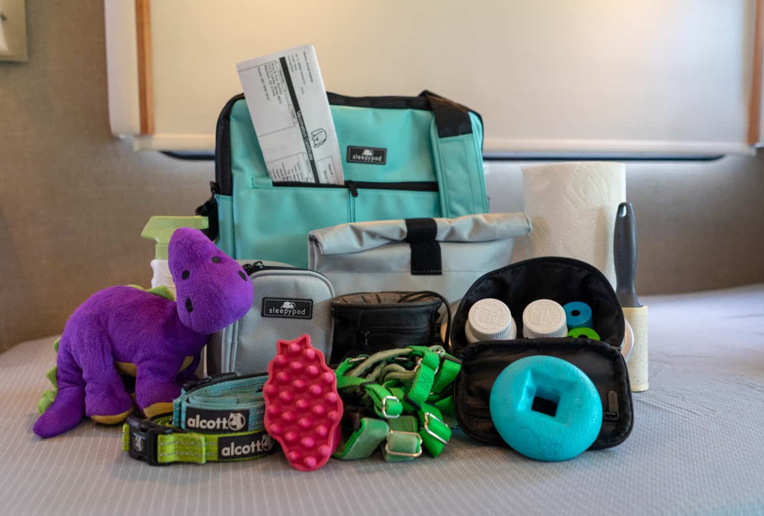 Expert's Guide to Packing an Overnight Bag for Your Pet | GoPetFriendly.com