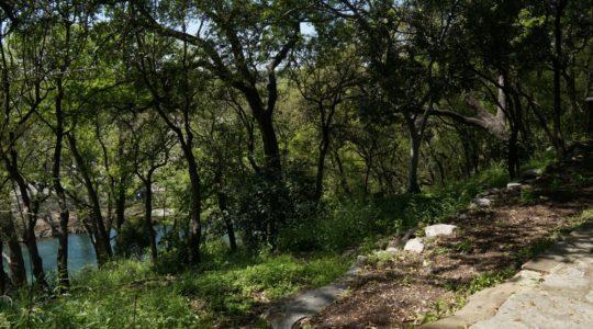 Guadalupe River - Gruene, TX