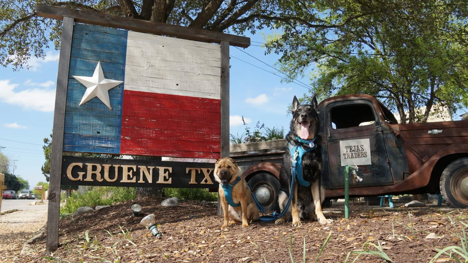 Ty and Buster - Gruene, TX