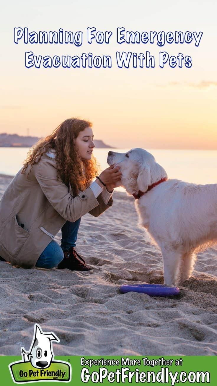 Woman holding her dog's face in her hands on a beach with the sun setting in the background