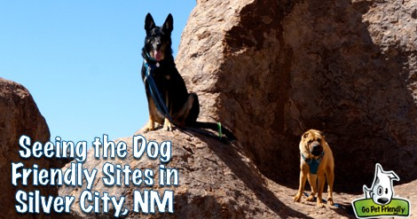 Silver City has oodles of pet friendly activities, and it's a great base for exploring this corner of New Mexico!