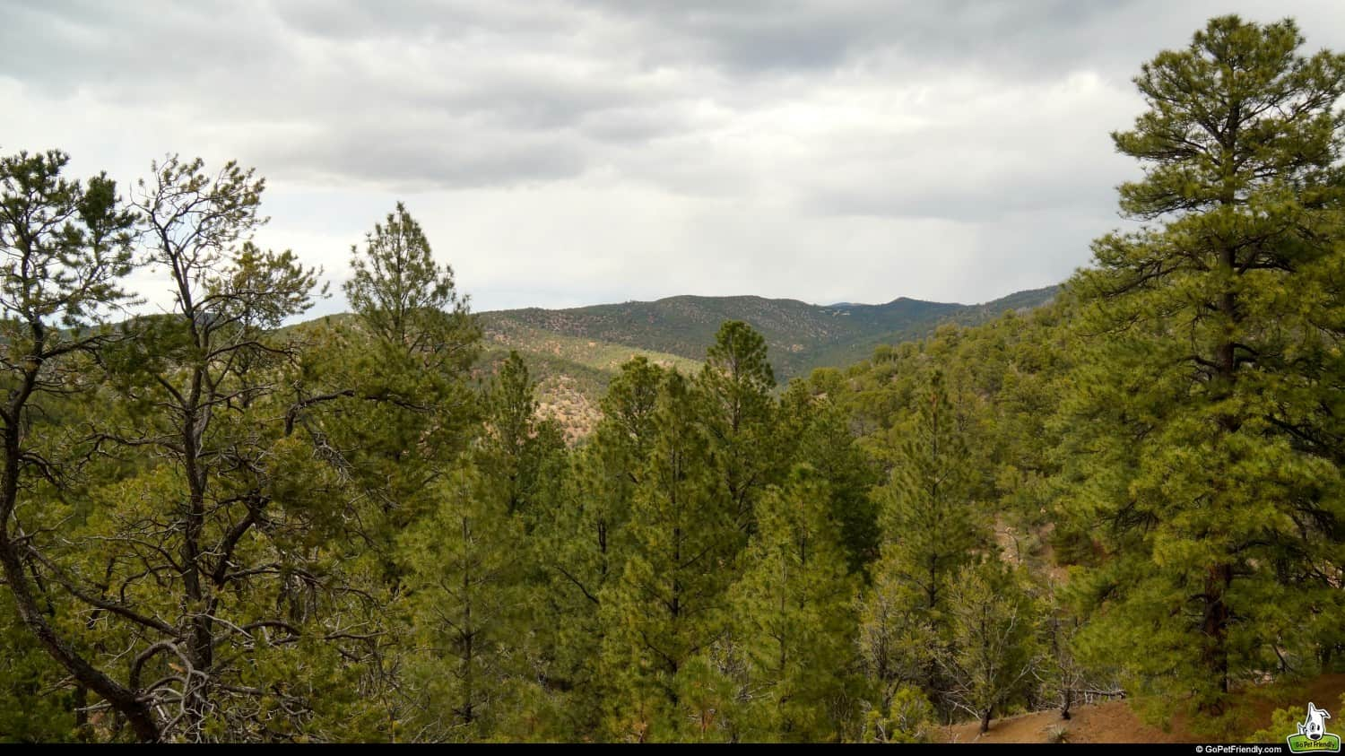 Hiking the Dale Ball Trails in Santa Fe, New Mexico