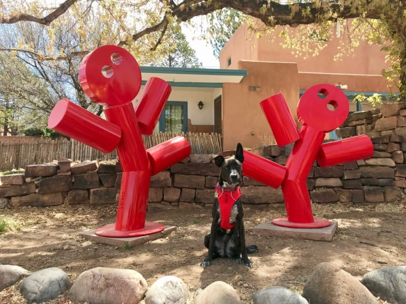 Brindle dog in red harness posting with sculpture of two dancing figures in Santa Fe, NM