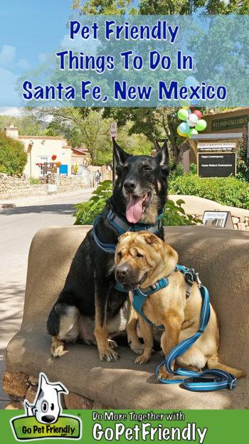 Black German Shepherd and tan Shar-pei dogs sitting on a bench in pet friendly Santa Fe, NM