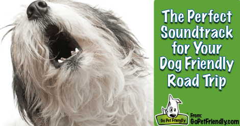 This is the perfect soundtrack for your next dog friendly road trip.