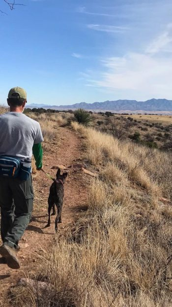 Man and dog hiking on a trail in Arizona