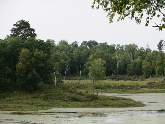 Itasca State Park - Park Rapids, MN