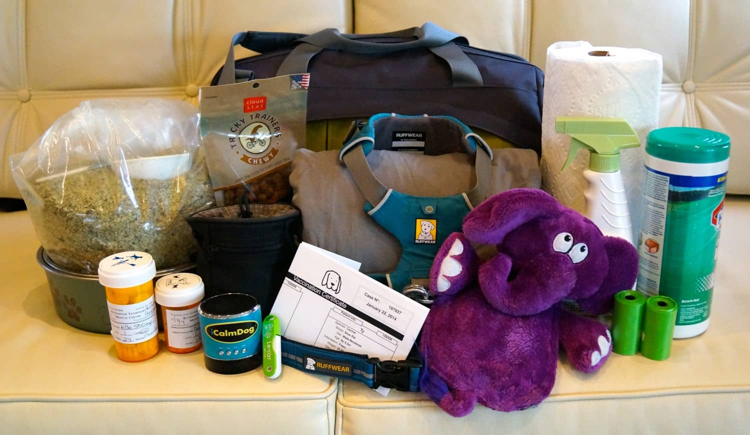 Packing the right gear for your pets is important for any pet friendly road trip.