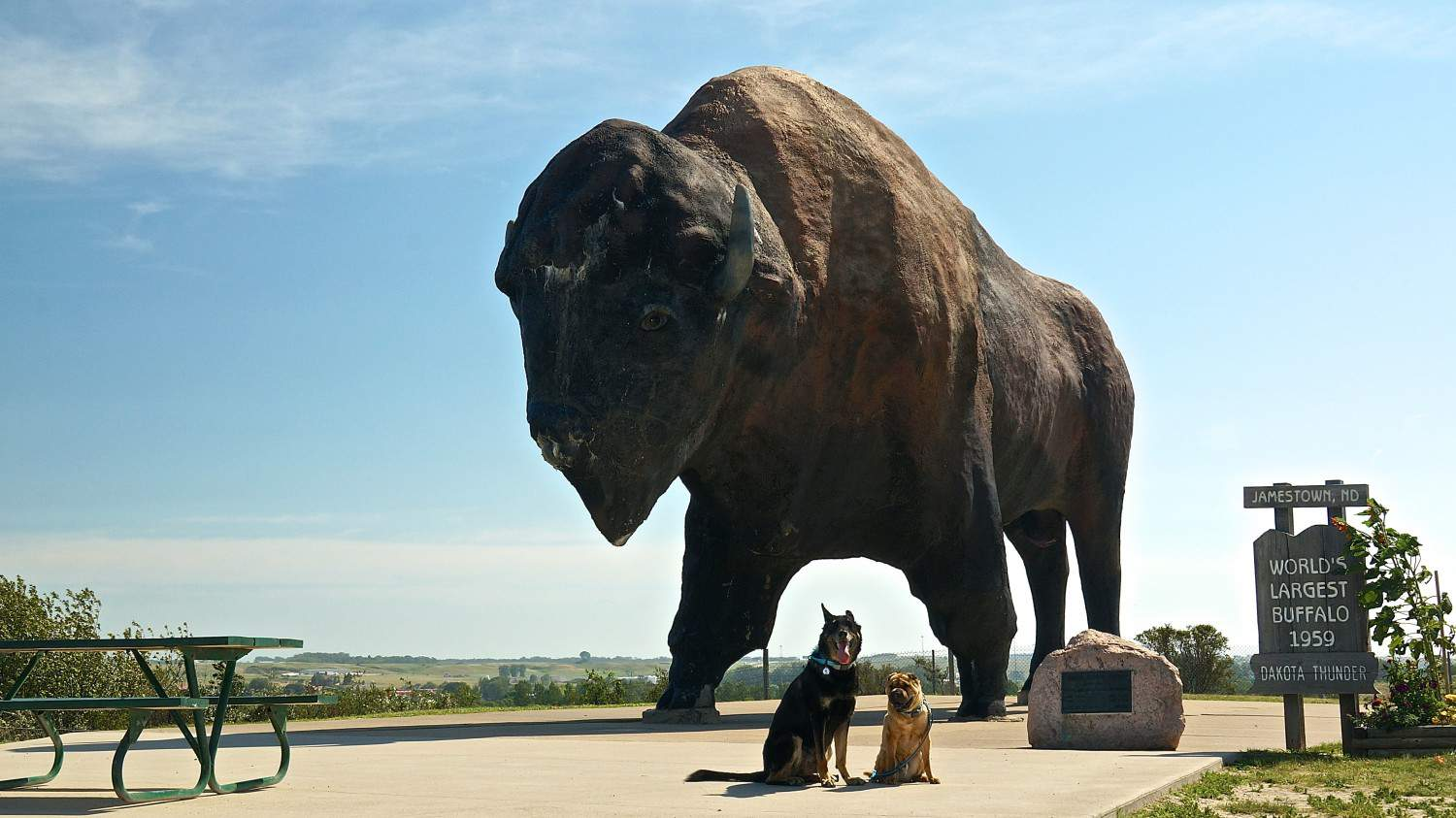 National Buffalo Museum - Jamestown, ND