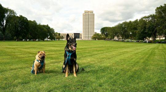 North Dakota State Capitol - Bismark, ND