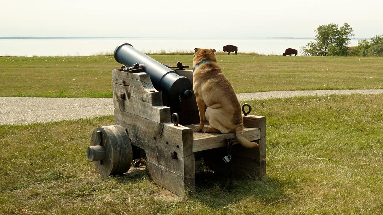 Fort Stevenson State Park - Garrison, ND