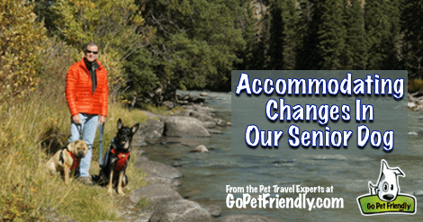 Traveling with a senior dog sometimes means making adjustments to your outdoor activities.