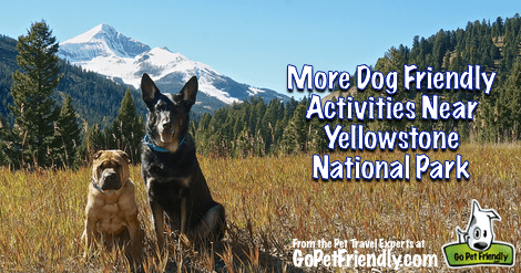 More Dog Friendly Activities Near Yellowstone National Park - West Yellowstone, Earthquake Lake, and Big Sky