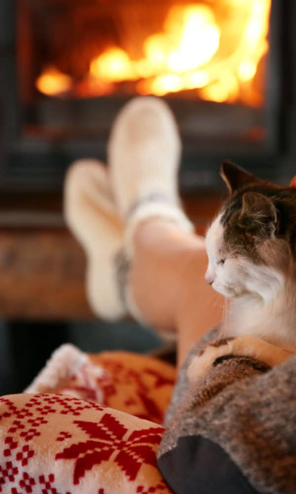 Tips for Booking a Pet Friendly Cabin or Vacation Rental