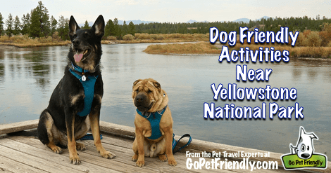 Dog Friendly Activities Near Yellowstone National Park - Gardiner, Paradise Valley, and Bozeman