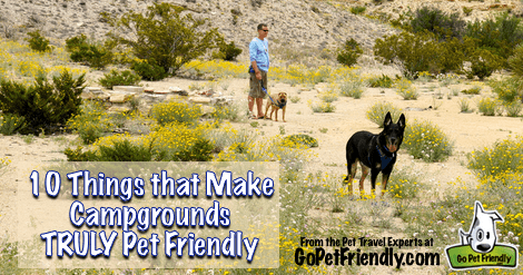 10 Things that Make Campgrounds Pet Friendly