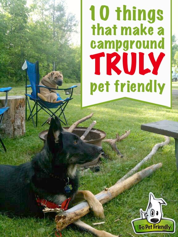 10 Things that Make Campgrounds Truly Pet Friendly