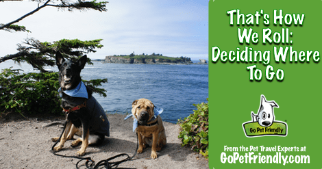 That's How We Roll: Deciding Where to Go from GoPetFriendly.com