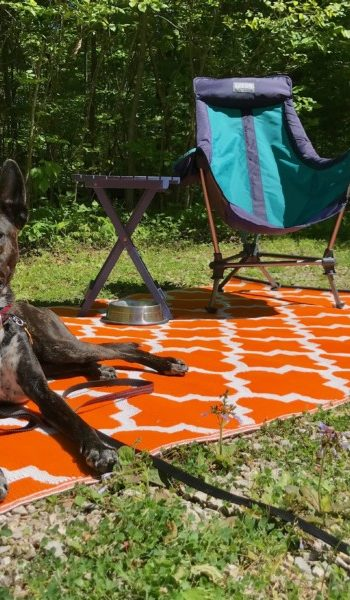 Brindle dog laying on an orange mat at a pet friendly campground