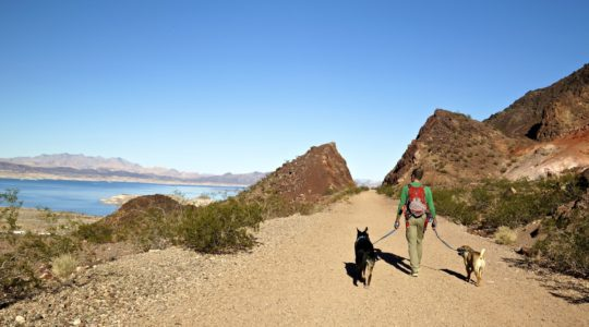 Buster, Ty, and Rod - Lake Mead, NV