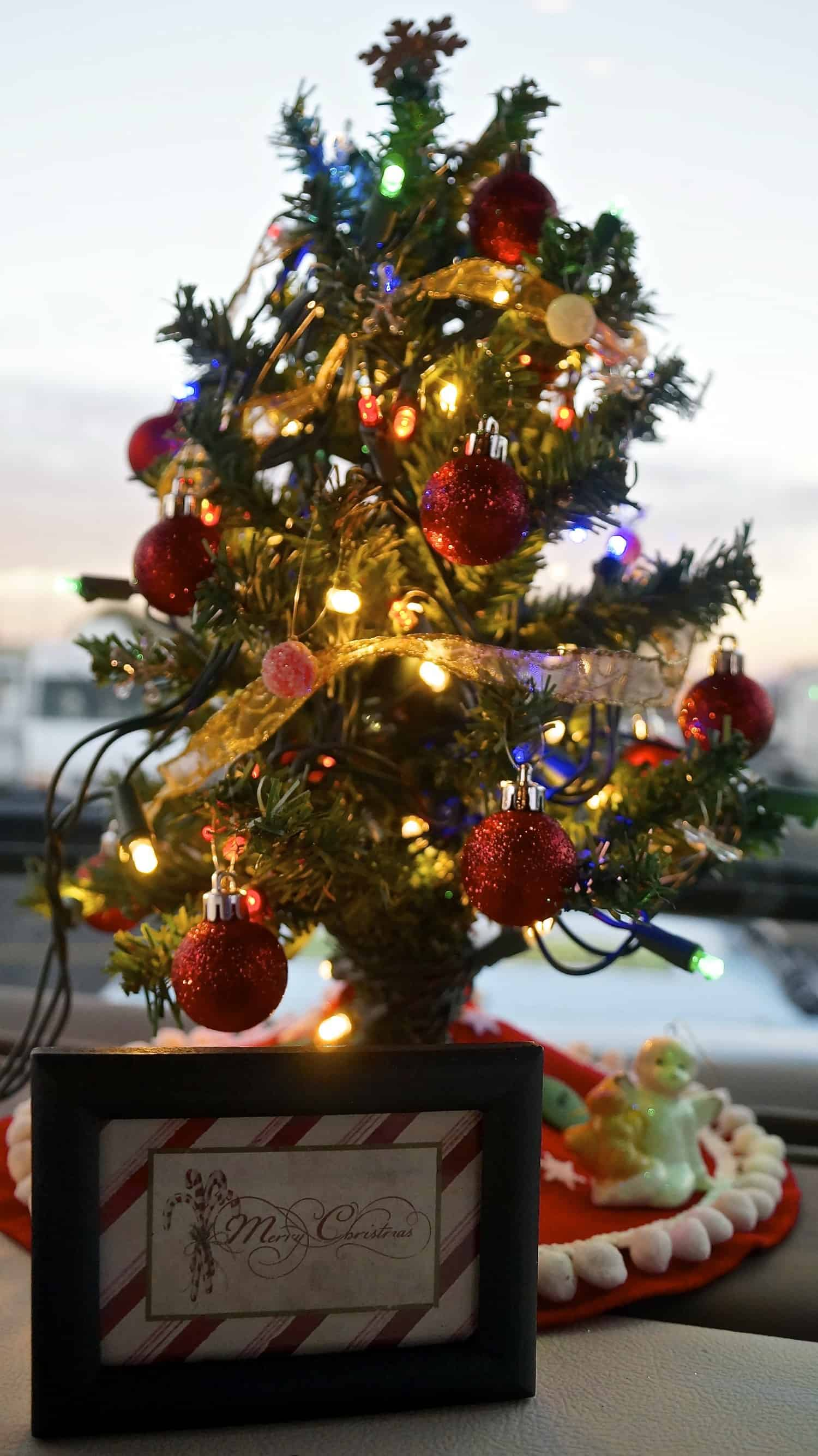 Tiny Christmas Tree in the Motorhome