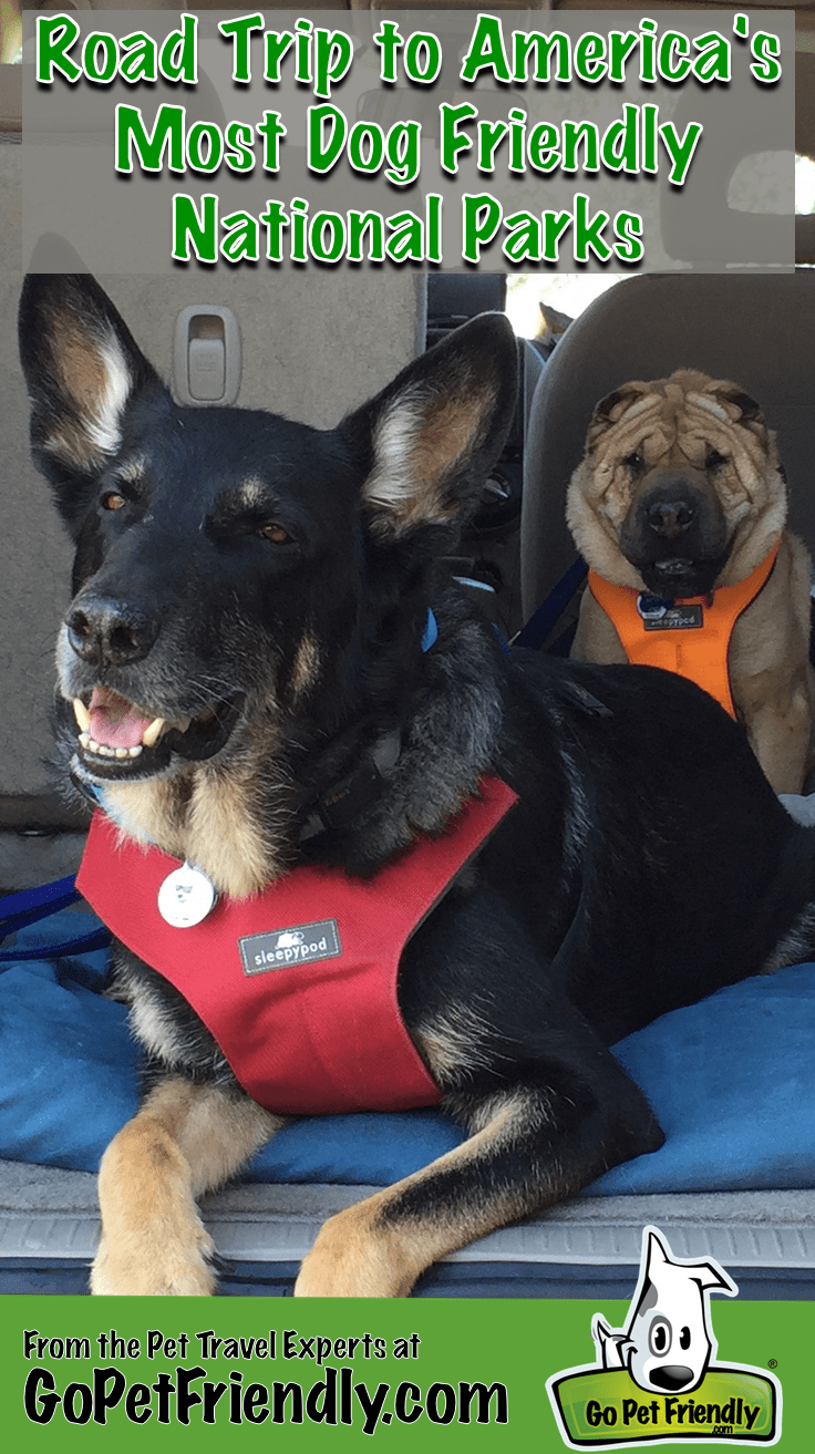Road Trip to America's Most Dog Friendly National Parks from the Pet Travel Experts at GoPetFriendly.com