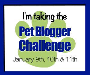Join the Pet Blogger Challenge Jan 9th, 10th and 11th