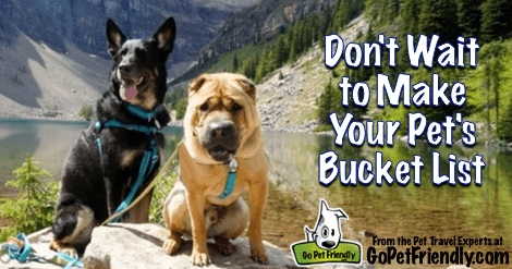 Don't Wait to Make Your Pet's Bucket List - From the Pet Travel Experts at GoPetFriendly.com