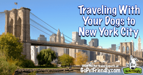 Traveling With Your Dogs to New York City from the Pet Travel Experts at GoPetFriendly.com