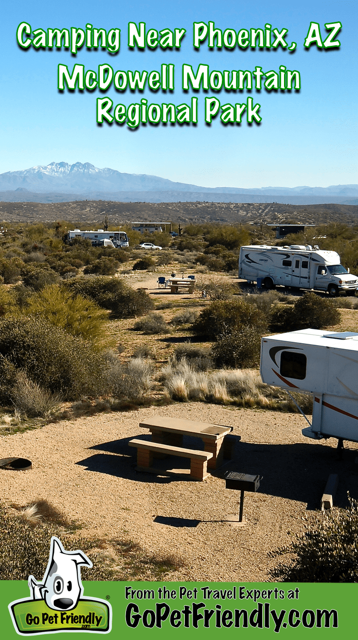 RVs in the pet friendly campground at McDowell Mountain Regional Park near Phoenix, AZ