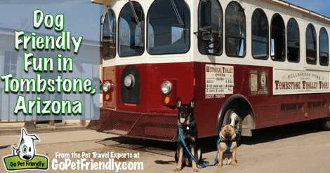 Dog Friendly Fun in Tombstone, Arizona from the Pet Travel Experts at GoPetFriendly.com