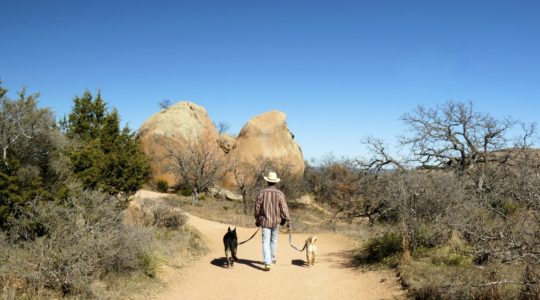 Enchanted Rock with Dogs - Hill Country, TX