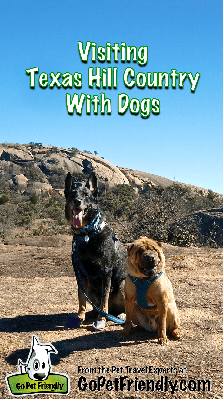 Visiting Texas Hill Country With Dogs from the Pet Travel Experts at GoPetFriendly.com