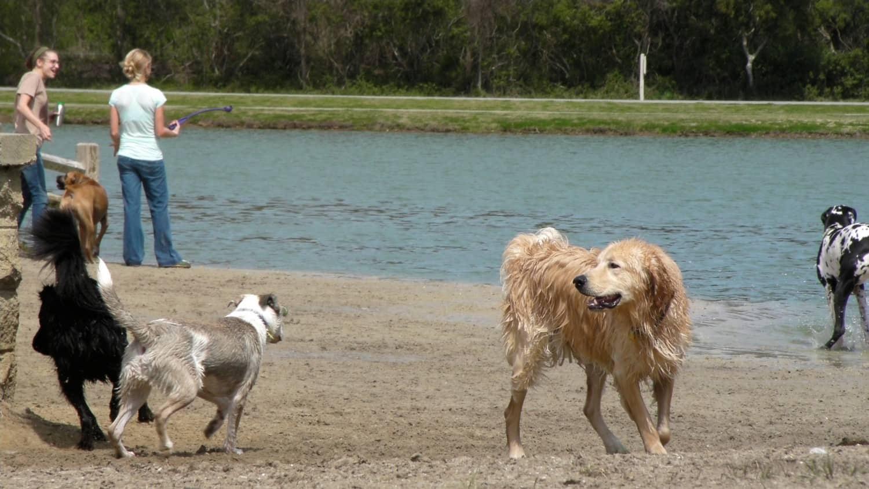 James Island Dog Park - Charleston, SC