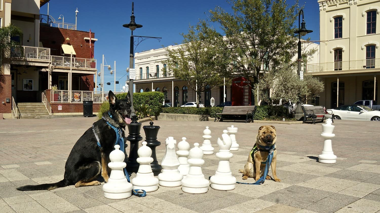 The Strand - Galveston, TX