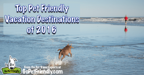 Top Pet Friendly Vacation Destinations of 2016
